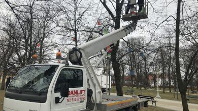 Podnośnik koszowy multitel 22m firmy Danlift przy demontażu oświetlenia w parku
